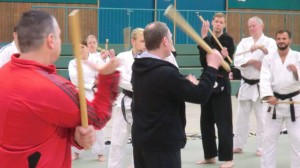 Bericht Lehrgang Jiu-Jitsu Union NW e.V. November 2013 mit Escrima